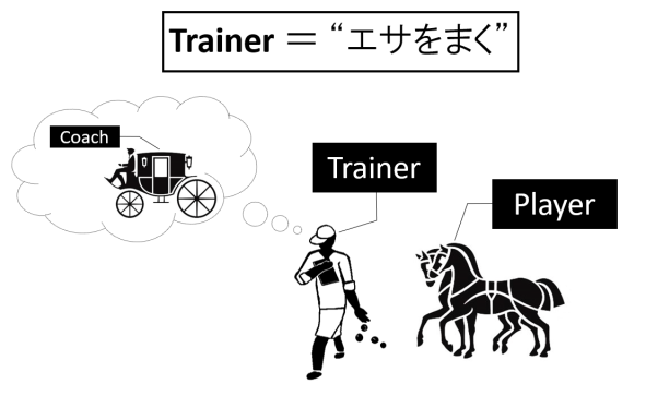 horse and carriage-feed